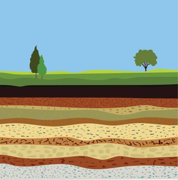 tworzenie gleby i horyzonty glebowe - geologia stock illustrations