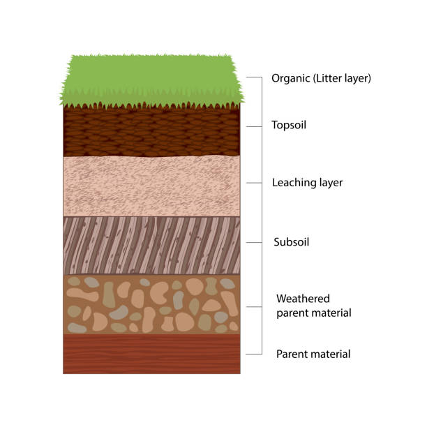 soil horizons and layers - rock formations stock illustrations