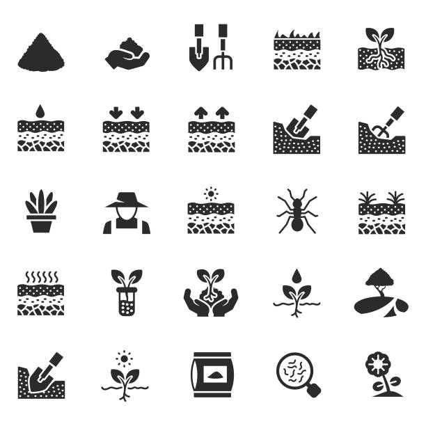 zestaw ikon gleby - geologia stock illustrations