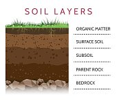 Soil layer scheme with grass
