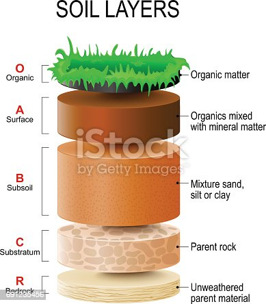 Soil layers stock vector art more images of agriculture for What are the different layers of soil