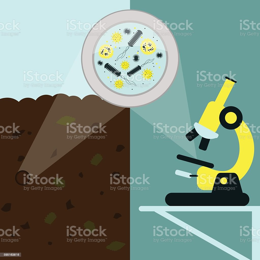 Soil Microbiology vector art illustration