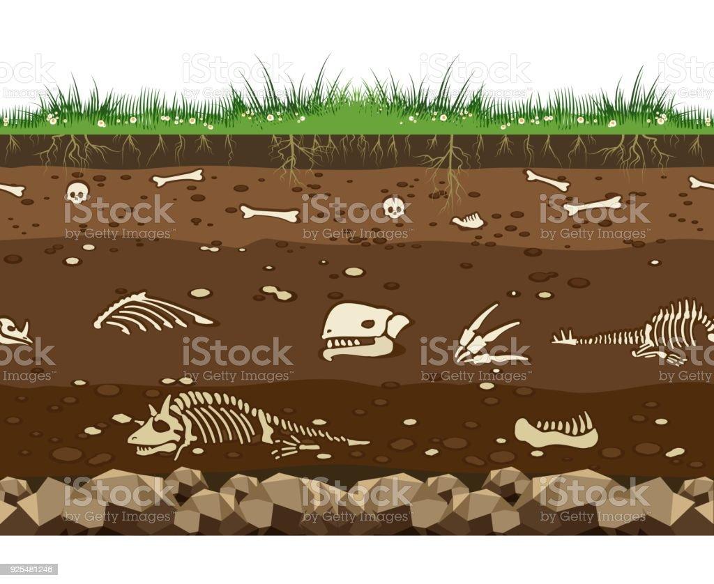 Suelo con los huesos de dinosaurio - ilustración de arte vectorial
