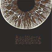 Solaris. Macro human eye drawing.