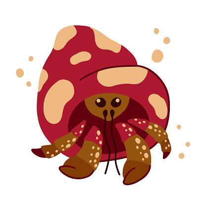 Soldier or hermit crab character. Cartoon hand drawn illustration of cute ocean animal