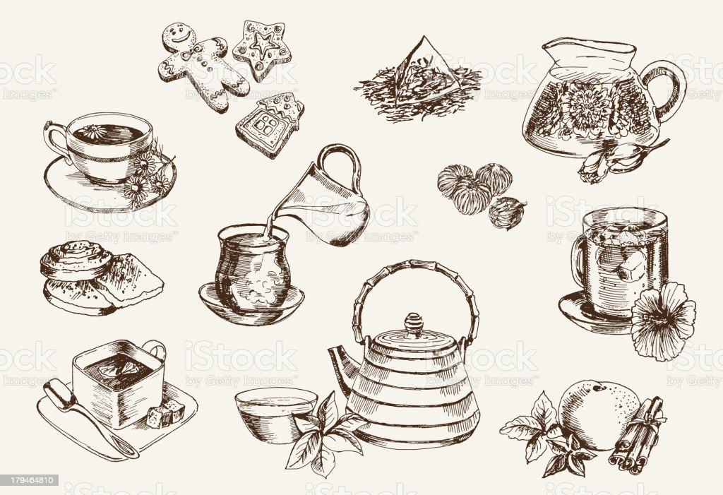 Some types of tea vector art illustration