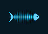 Sonar fish
