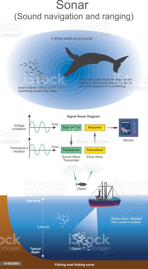 Sonar. Sound navigation and ranging. vector art illustration
