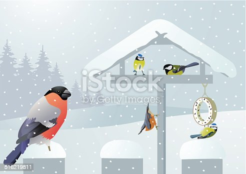 Colorful songbirds in winter on a birdhouse. Vector illustration. Download contains EPS 8, AI 8, AI CS5, PDF, JPEG (8268 x 5856px).