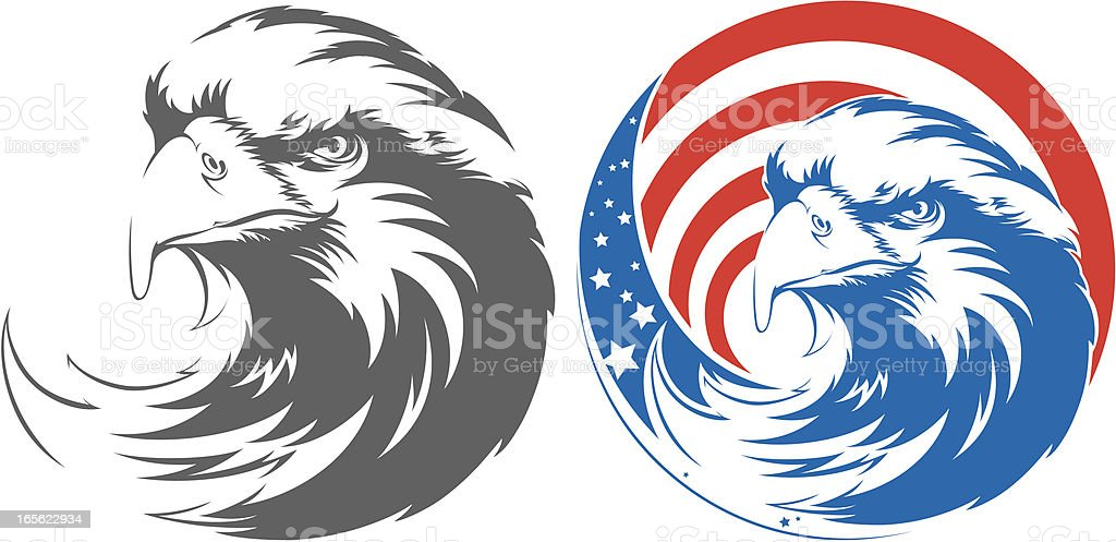 bald eagle vector art illustration