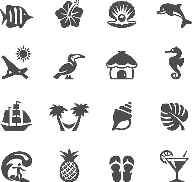 soulico icons - tropical vacations - seashell stock illustrations, clip art, cartoons, & icons