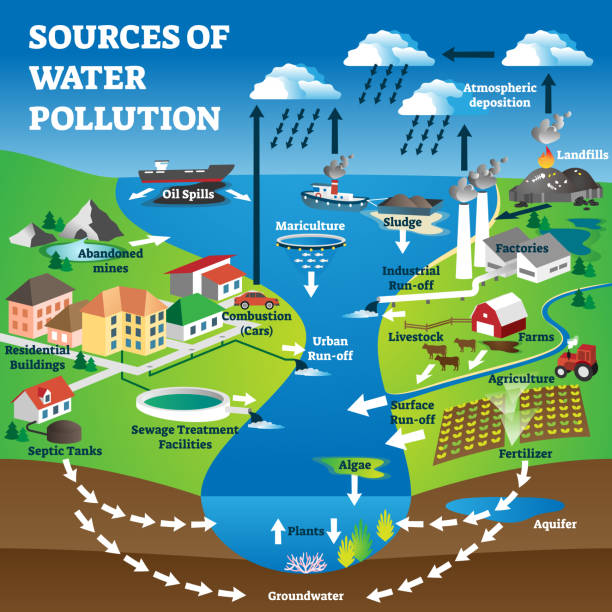 Sources of water pollution as freshwater contamination causes explanation vector art illustration