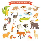 Sourth America animals  vector illustration. Big vector set