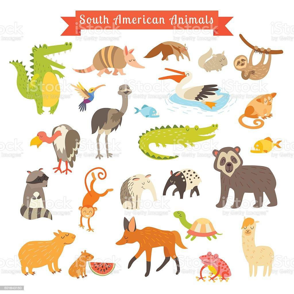 Sourth America animals  vector illustration. Big vector set vector art illustration