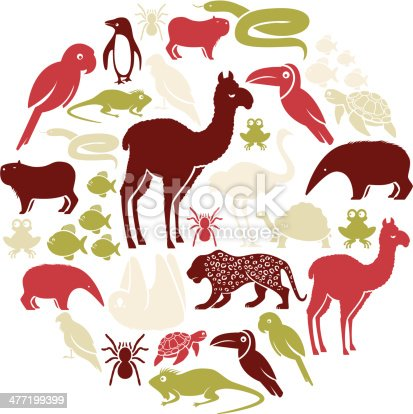 A set of South American animals