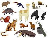 South American animal vector illustration. Cartoon armadillo, tapir, capybara, cute alpaca wild or zoo animal jungle character. Llama, jaguar in Brazilian America animalistic set isolated on white