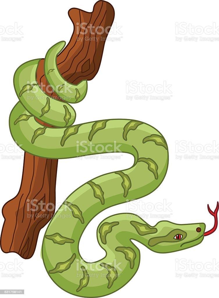 amazon rainforest trees clipart. amazon rainforest boa constrictor reptile snake trees clipart