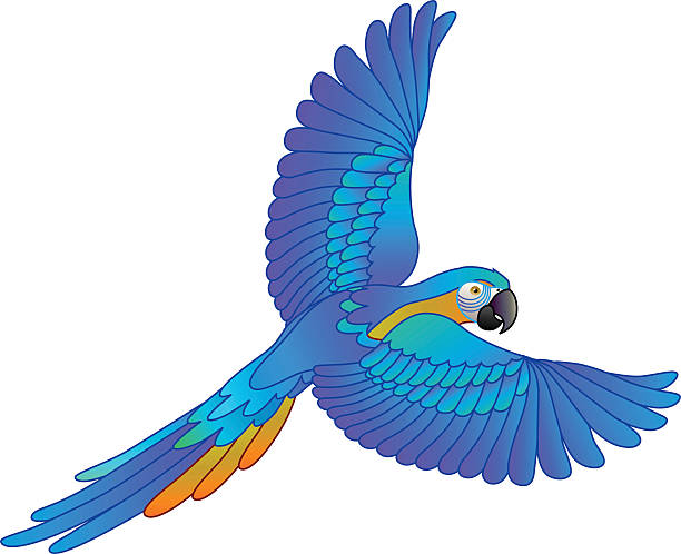 Macaw Parrot Bird Flying RED Lm Treasures |Blue Macaw Parrot Flying