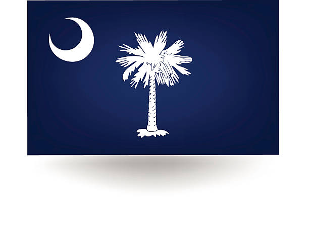 South Carolina State Flag Official flag of the state of South Carolina south carolina stock illustrations