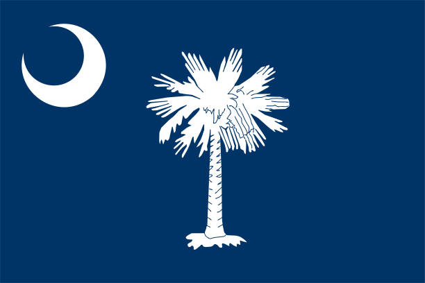 South Carolina state flag vector illustration Accurate flag of the state of South Carolina. Vector illustration. south carolina stock illustrations