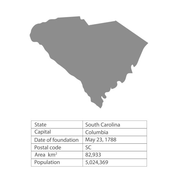 South Carolina. States of America territory on white background. Separate state. Vector illustration South Carolina. States of America territory on white background. Separate state. Vector illustration south carolina stock illustrations