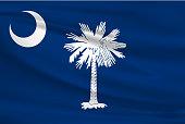 South Carolina Waving Flag