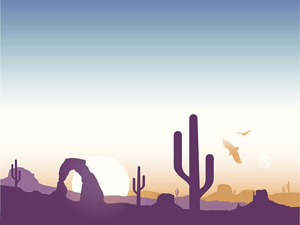 southwest cactus hintergrund - nationalpark stock-grafiken, -clipart, -cartoons und -symbole
