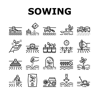 Sowing Agricultural Collection Icons Set Vector. Sowing Seeds And Field Processing, Plant Care And Harvesting, Tractor And Harvester Black Contour Illustrations