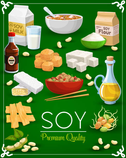 Soy bean, tofu, milk and oil, tempeh, miso sauce Soy food products vector design of soy bean, sprouted soybeans and tofu, milk, oil and sauce, tempeh, miso paste and meat, noodles, flour, green leaf and pod. Vegetarian meal, Asian cooking ingredient temps stock illustrations