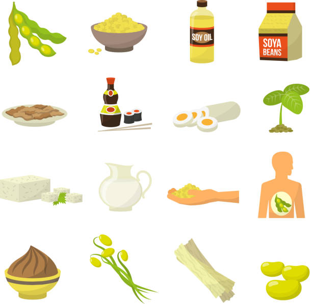 soy food Soy food icons - soy milk soy beans soy sauce soy meat tofu soy oil vector illustration temps stock illustrations