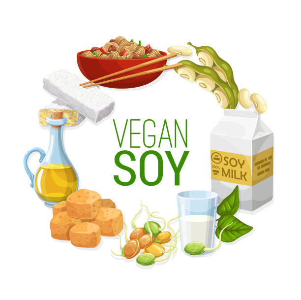 Soya beans, soy milk and oil, tofu, tempeh, meat Soy and soya bean food vector frame of soybean, soy milk and oil, tofu, tempeh and meat, noodles and sprouted edamame with green leaves and pods. Vegetarian plant meal and vegan protein design temps stock illustrations