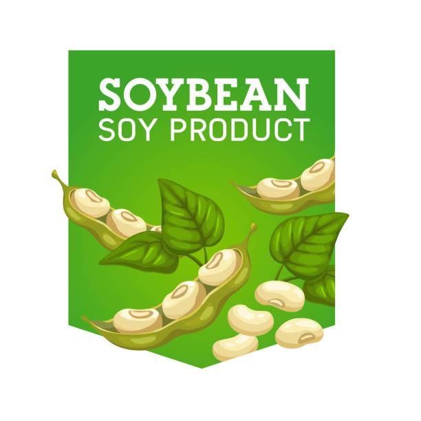 葉の入った大豆ポッド。ベクター大豆製品 - 枝豆点のイラスト素材/クリップアート素材/マンガ素材/アイコン素材