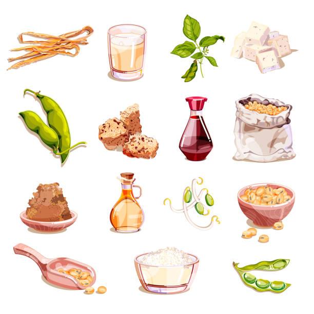 大豆、大豆食品ベクトル漫画イラスト。ベジタリアン製品のアイコン、デザイン要素。豆乳、豆腐、もやし、肉 - 枝豆点のイラスト素材/クリップアート素材/マンガ素材/アイコン素材