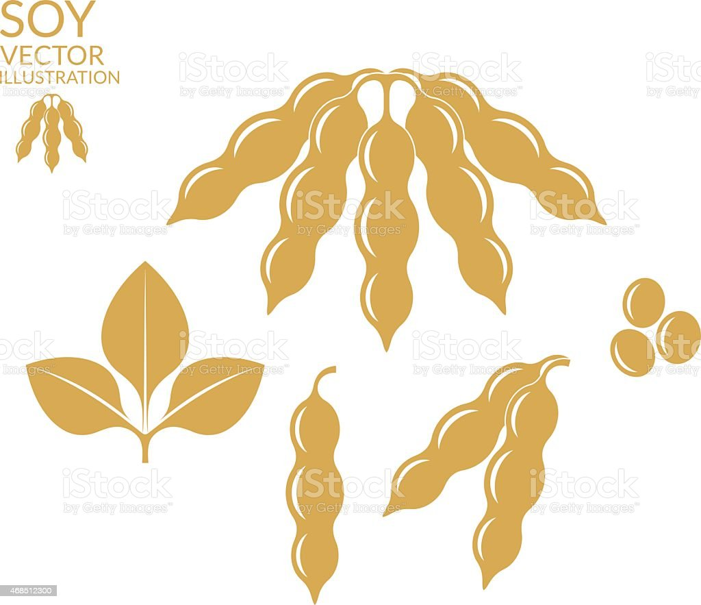 royalty free soybean clip art vector images illustrations istock rh istockphoto com soybean clip art black and white soybean plant clipart