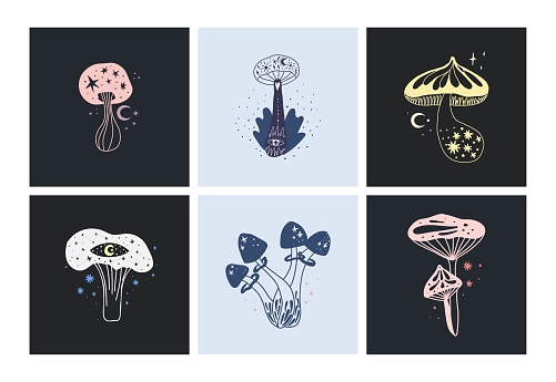 Space mushrooms poster set. Hand drawn line pastel colored mushroom collection. Cosmos, magic or forest doodle plants, fantastic decorative background, vector cartoon isolated illustration for prints