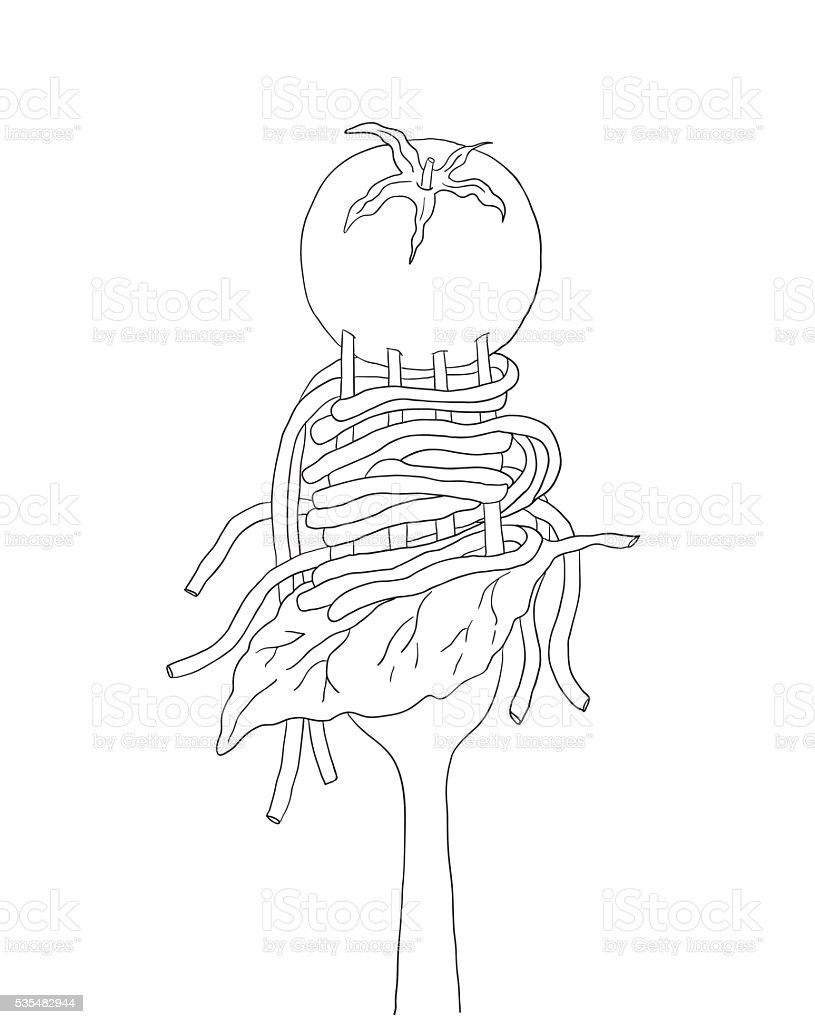 Spaghetti with cherry tomato and Basil leaf on a fork. vector art illustration