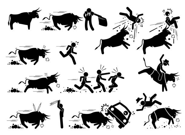 Spain bullfight and bull run event pictogram icons. Stick figure illustrations depict angry bull charging at matador, people, car, and also rodeo game. knocked down stock illustrations