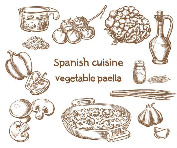 ilustraciones, imágenes clip art, dibujos animados e iconos de stock de cocina española. ingredientes de paella vegetal vector esbozo. - comida española