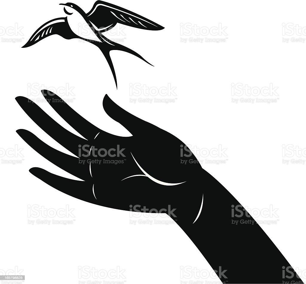Sparrow Bird Release, Freedom vector art illustration