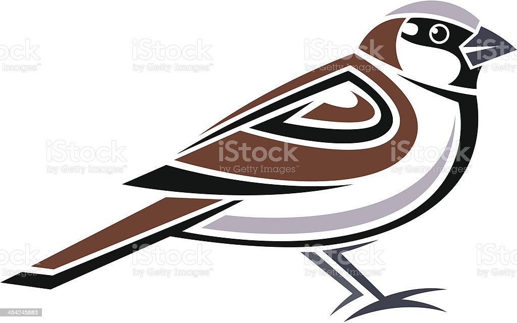 royalty free house sparrow clip art vector images illustrations rh istockphoto com sparrow clipart outline jack sparrow clipart