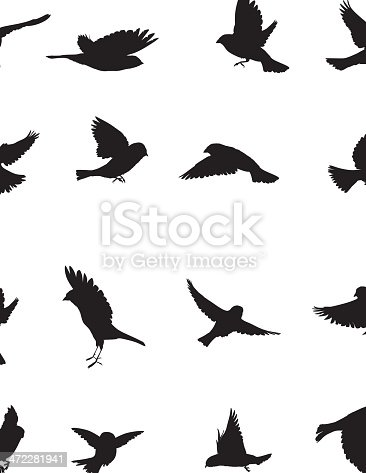 Sparrows Silhouette collection