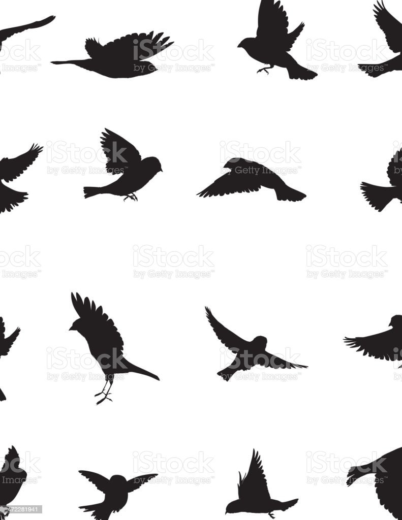 Sparrows Silhouette vector art illustration