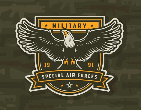 Special air forces colorful badge