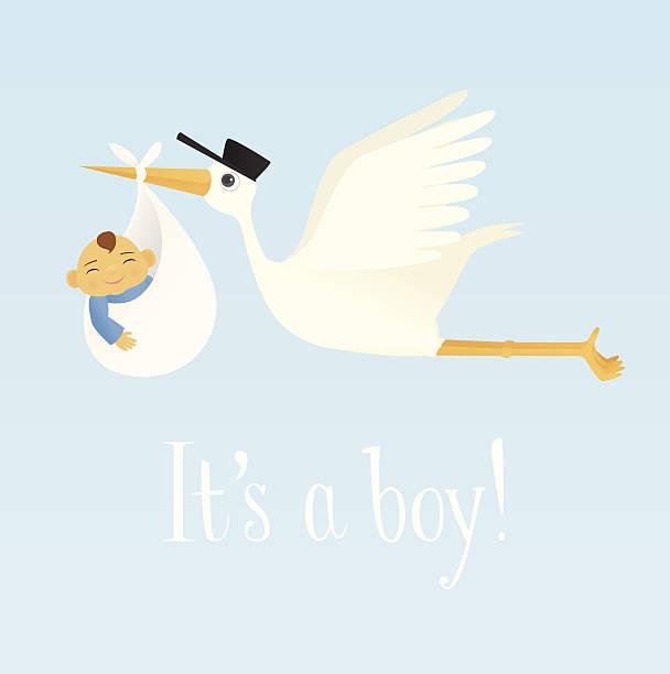 stockillustraties, clipart, cartoons en iconen met special delivery (baby boy) - alleen één jongensbaby