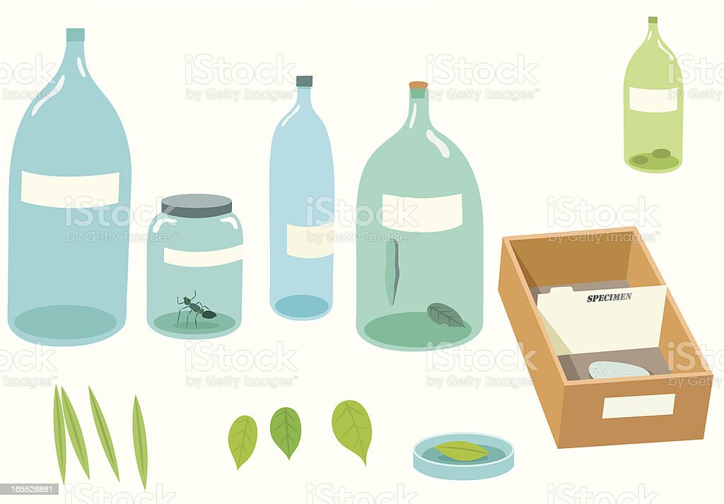 Specimens royalty-free specimens stock vector art & more images of analyzing