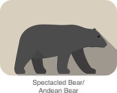 Spectacled bear walking side flat 3D icon design