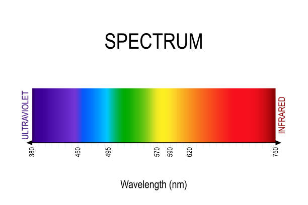 ilustrações, clipart, desenhos animados e ícones de espectro. a luz visível, infravermelho e ultravioleta. - espectro