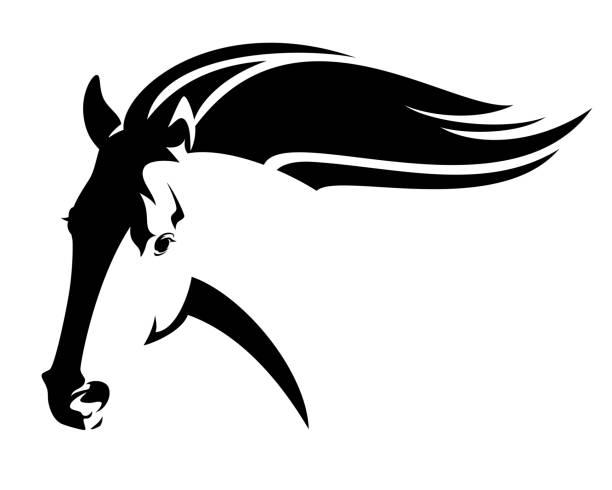 speeding mustang horse black and white vector portrait vector art illustration