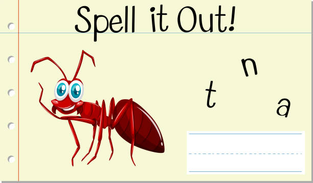 Spell english word ant Spell english word ant illustration alphabet clipart stock illustrations