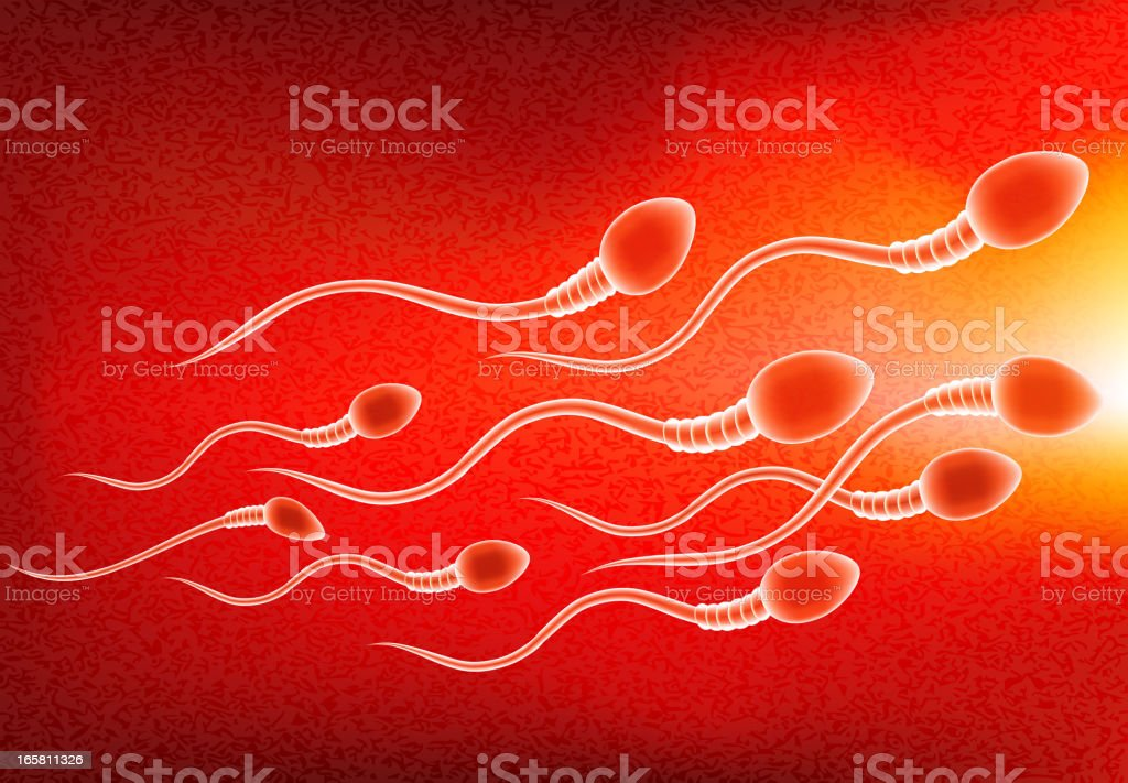 Sperm Swimming to Egg Background royalty-free stock vector art